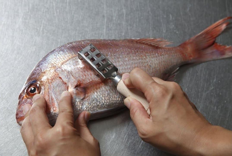 подготовить рыбу к хранению